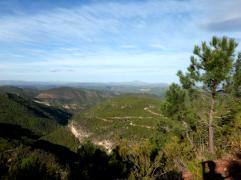paisaje 2